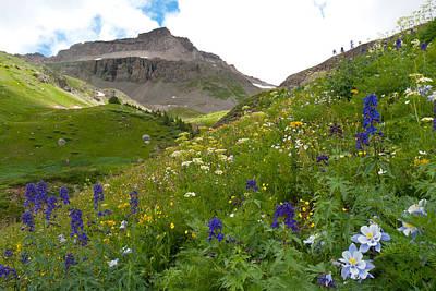 Photograph - Yankee Boy Basin Landscape by Cascade Colors