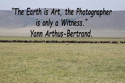 Photograph - Yann Arthus-bertrand Quote by Tony Murtagh