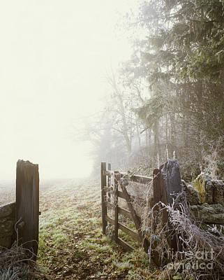 Photograph - Yanworth  by Paul Felix