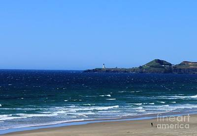 Photograph - Yaquina Head by Erica Hanel