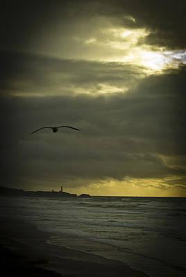 Photograph - Yaquina Head Lighthouse by Dale Stillman