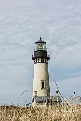 Photograph - Yaquina Head Lighthouse Oregon Coast by Scott Pellegrin