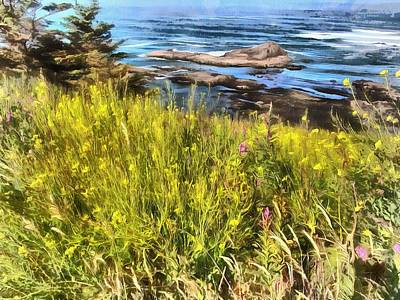 Photograph - Yaquina Head Wildflowers by Thom Zehrfeld