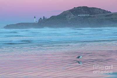 Agate Beach Oregon Photograph - Yaquina Twilight Reflections by Richard Sandford
