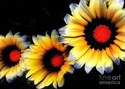 Photograph - Yard Flowers by Jenny Revitz Soper