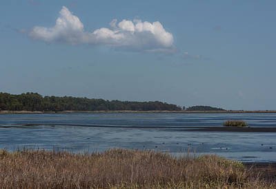 Photograph - Yawkey Wildlife Reguge - View From The Causeway by Suzanne Gaff
