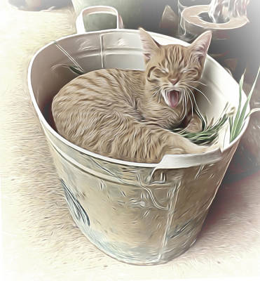 Mixed Media - Yawning Cat by Pamela Walton