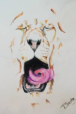 Pastel - Yawning Lion  by Teresa Smith