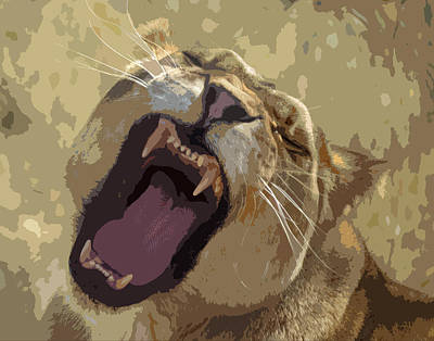 Photograph - Yawning Lioness by Laurel Powell