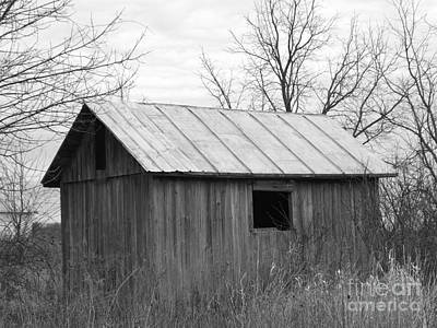 Photograph - Ye Olde Chicken Coop by Sara Raber