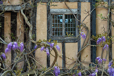 Photograph - Ye Olde Window by Tim Gainey