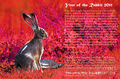Year Of The Rabbit 2011 . Red Art Print by Wingsdomain Art and Photography
