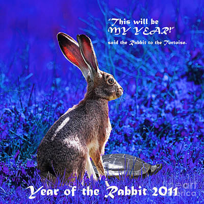 Year Of The Rabbit 2011 . Square Blue Art Print by Wingsdomain Art and Photography