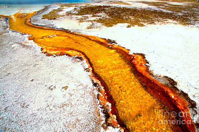 Photograph - Yellow Algae Mat Stream by Adam Jewell