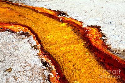 Photograph - Yellow Algae Stream by Adam Jewell