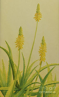 Painting - Yellow Aloe by Sandra Neumann Wilderman