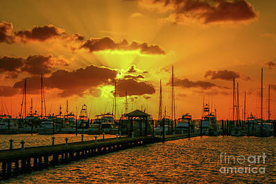 Photograph - Yellow And Orange Rays by Tom Claud