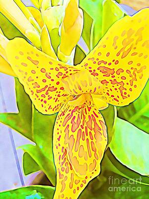 Canna Digital Art - Yellow And Orange Spotted Canna Lily by Sandy Hawke