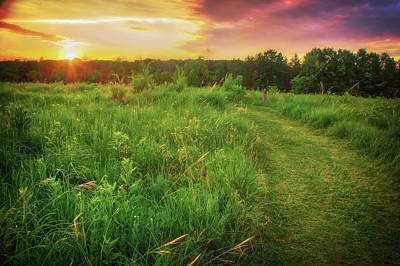 Photograph -  Retzer Nature Center - Yellow And Purple Summer Sunset  by Jennifer Rondinelli Reilly - Fine Art Photography