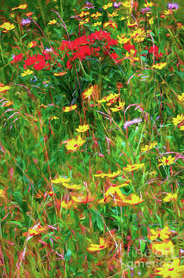 Painting - Yellow And Red Flowers In The Blue Ridge Ap by Dan Carmichael