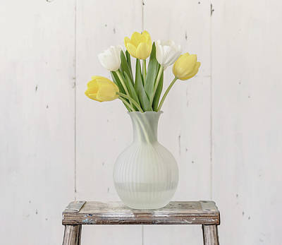Photograph - Yellow And White Tulips by Kim Hojnacki