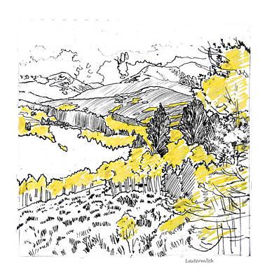 Colorado Rockies Drawing - Yellow Aspens Colorado Mountains by John Lautermilch