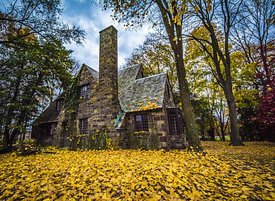 Photograph - Yellow At The Cabin by Francisco Gomez