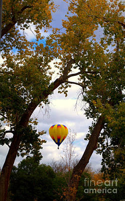 Photograph - Yellow Balloon In The Wild by Anjanette Douglas
