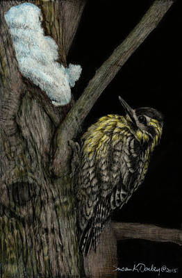 Painting - Yellow-bellied Sapsucker by Susan Donley