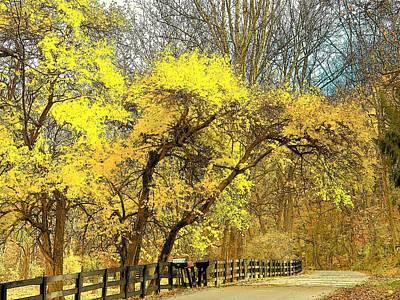 Photograph - Yellow Bend by Joyce Kimble Smith