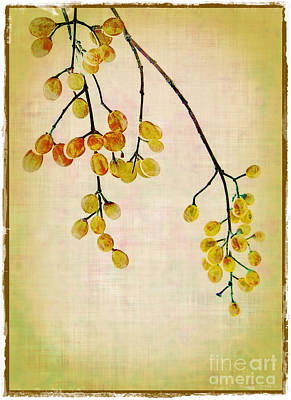 Yellow Berries Art Print