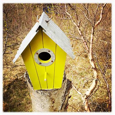Yellow Bird House Art Print