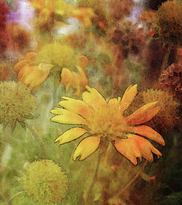 Comedian Drawings - Yellow Blossoms 2591 IDP_2 by Steven Ward