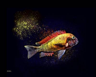 Yellow Blunthead Cichlid  Art Print