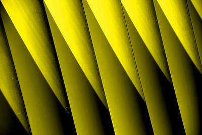 Yellow Borders Art Print
