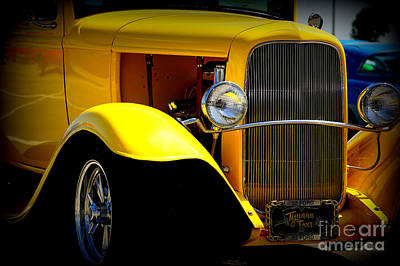 Photograph - Yellow Boy by Bob Brents