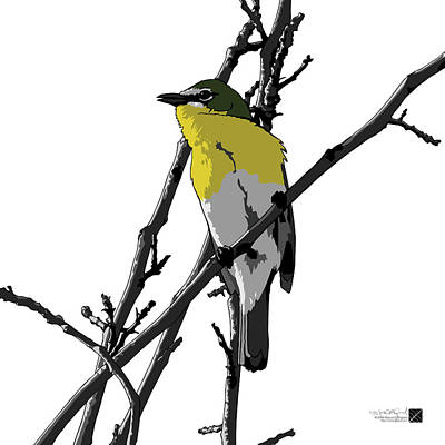 Digital Art - Yellow-breasted Chat - White Background by Marcus England