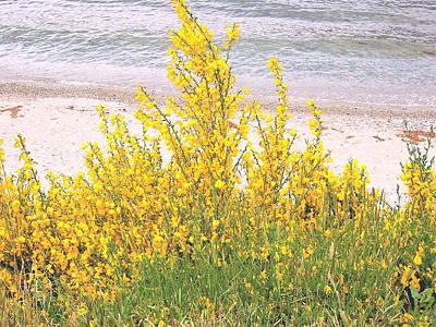 Yellow Brush Art Print
