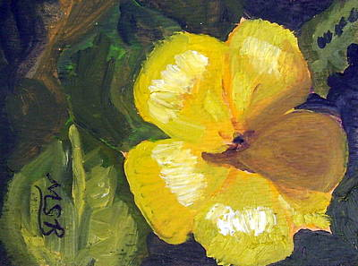 Yellow Buttercup  Art Print by Maria Soto Robbins