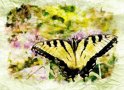 Digital Art - Yellow Butterfly by Ches Black