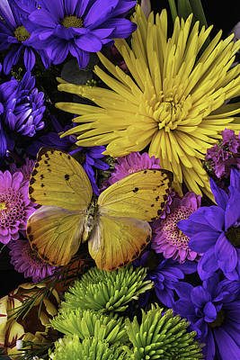 Gerbera Daisy Photograph - Yellow Butterfly On Bouquet by Garry Gay