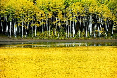 Lake Photograph - Yellow by Chad Dutson