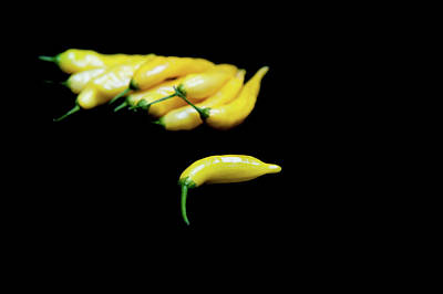 Chillie Photograph - Yellow Chillies On A Black Background II by Helen Northcott