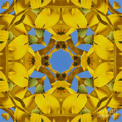Art Print featuring the photograph Yellow Coneflower Kaleidoscope by Smilin Eyes  Treasures
