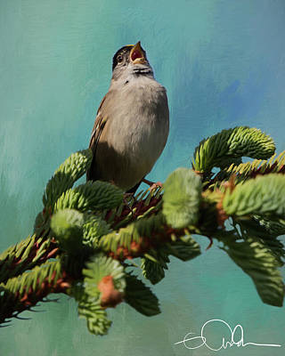 Digital Art - Yellow Crowned Warbler by Gloria Anderson