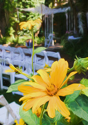 Photograph - Yellow Daisies At Wedding by Ginger Wakem