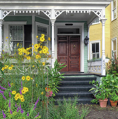 Photograph - Yellow Daisies In Charleston by Dave Mills
