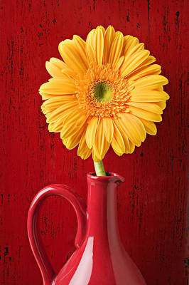 Chrysanthemum Photograph - Yellow Daisy In Red Vase by Garry Gay