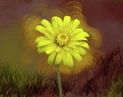Yellow Daisy Art Print by Joe Halinar