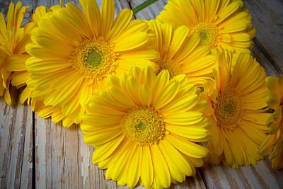 Gerbera Daisy Photograph - Yellow Daisy Still Life by Garry Gay